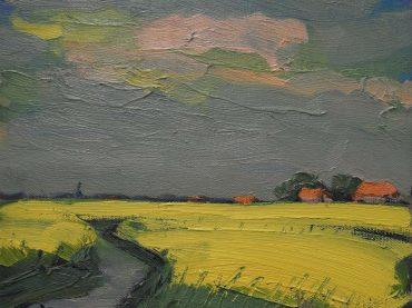 Wim van der Veer - Fries landschap