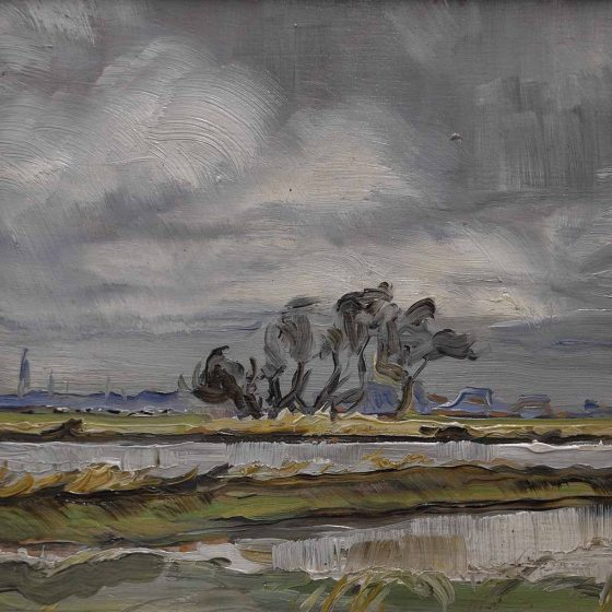 Robert Röhrkohl - Zicht op Leeuwarden vanaf de Kleine Wielen