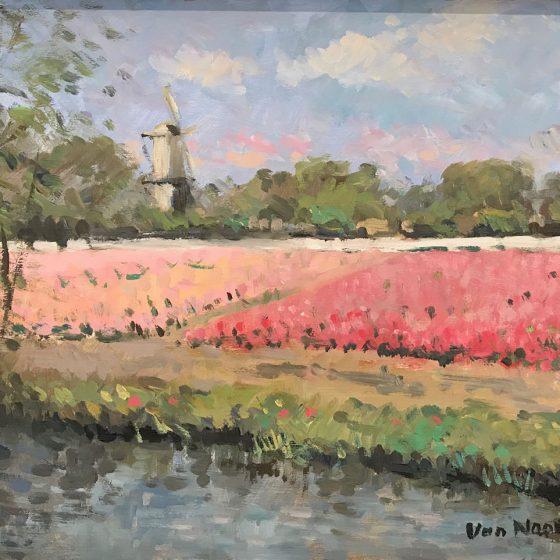 A. van Noort - Hillegom