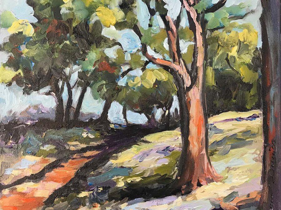 Dam Domido - Le petit sentier ombragé
