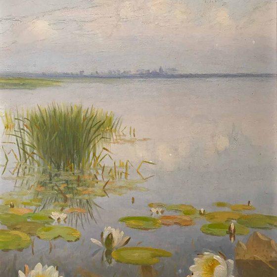Dirk Smorenberg - Waterlelies